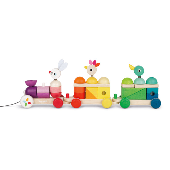 JANOD Pullalong - Multicolour Train -  with Blocks