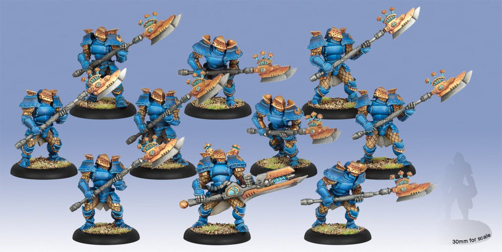 Warmachine Cygnar Stormguard Storm Knight PLASTIC Unit (10) Box WEB