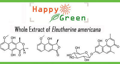 DRY Eleutherine Americana Merr. (Horm Daeng) FOR Diabetic/angina pectoris/Cancer - HappyGreenStore