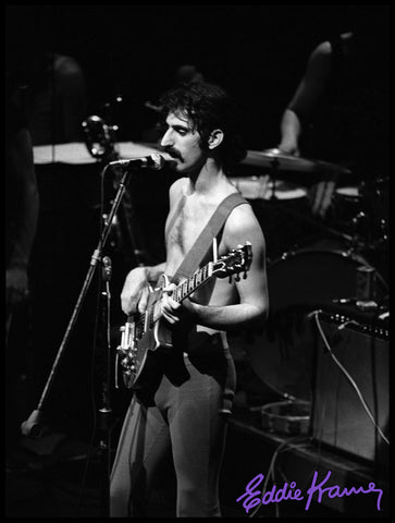 FRANK ZAPPA: <br>THE PACKAGE