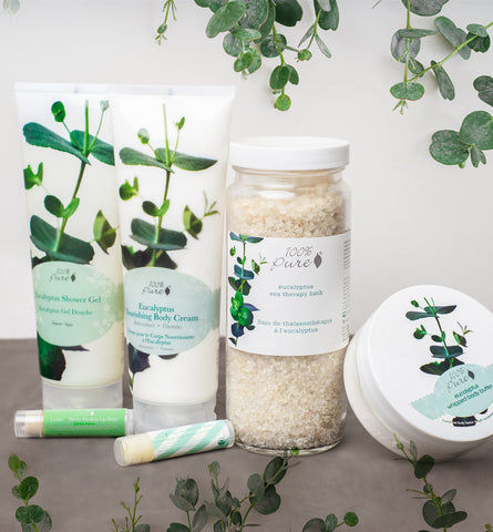 Blog Feed Article Feature Image Carousel: Eucalyptus Benefits for Skin, Hair, and More