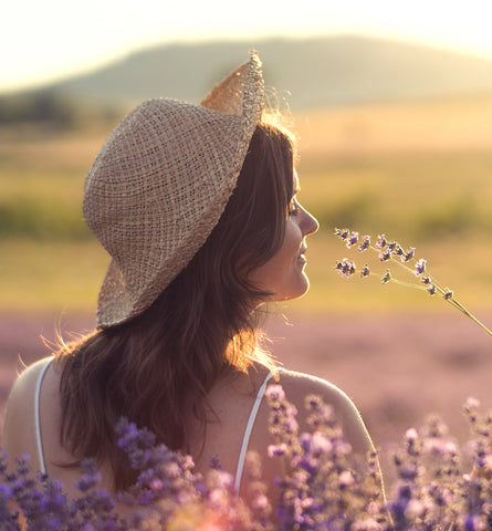Blog Feed Article Feature Image Carousel: Lavender Essential Oil Benefits for Mood