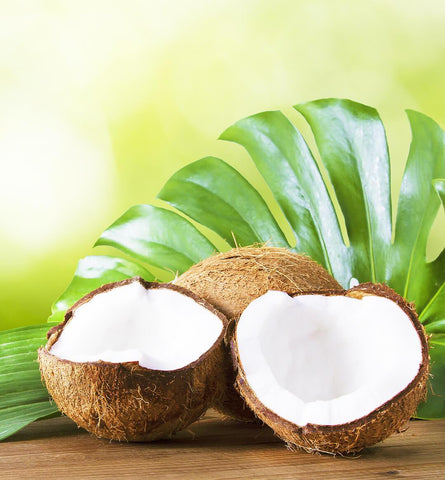 Blog Feed Article Feature Image Carousel: National Coconut Day Celebration