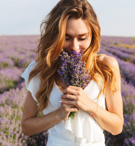 Blog Feed Article Feature Image Carousel: Lavender Flower for Happiness & Health