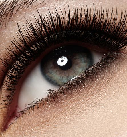 Blog Feed Article Feature Image Carousel: Lash Lifts & Falsies: What You Should Know