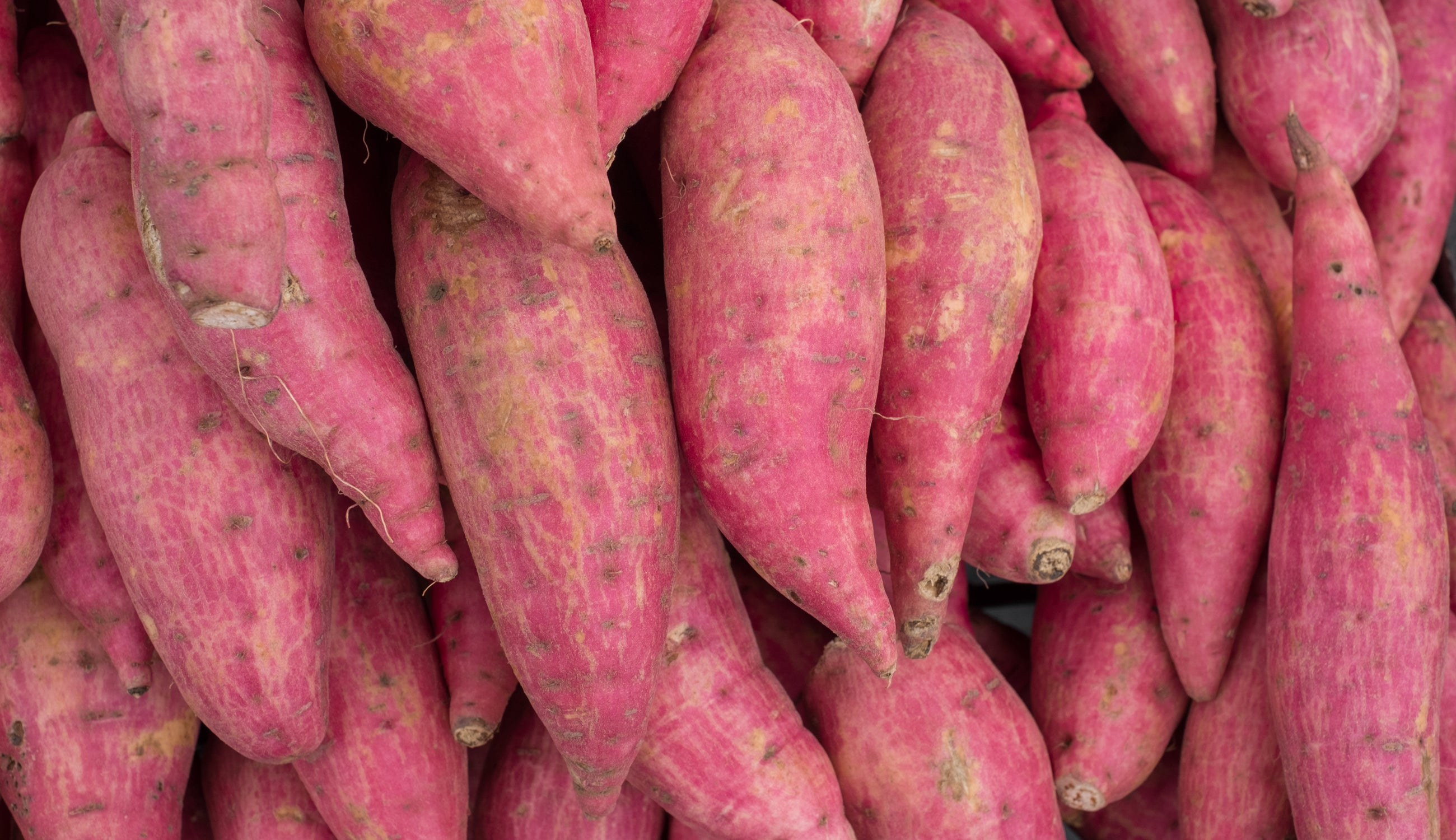 Sweet Potato Hyalouronic Acid