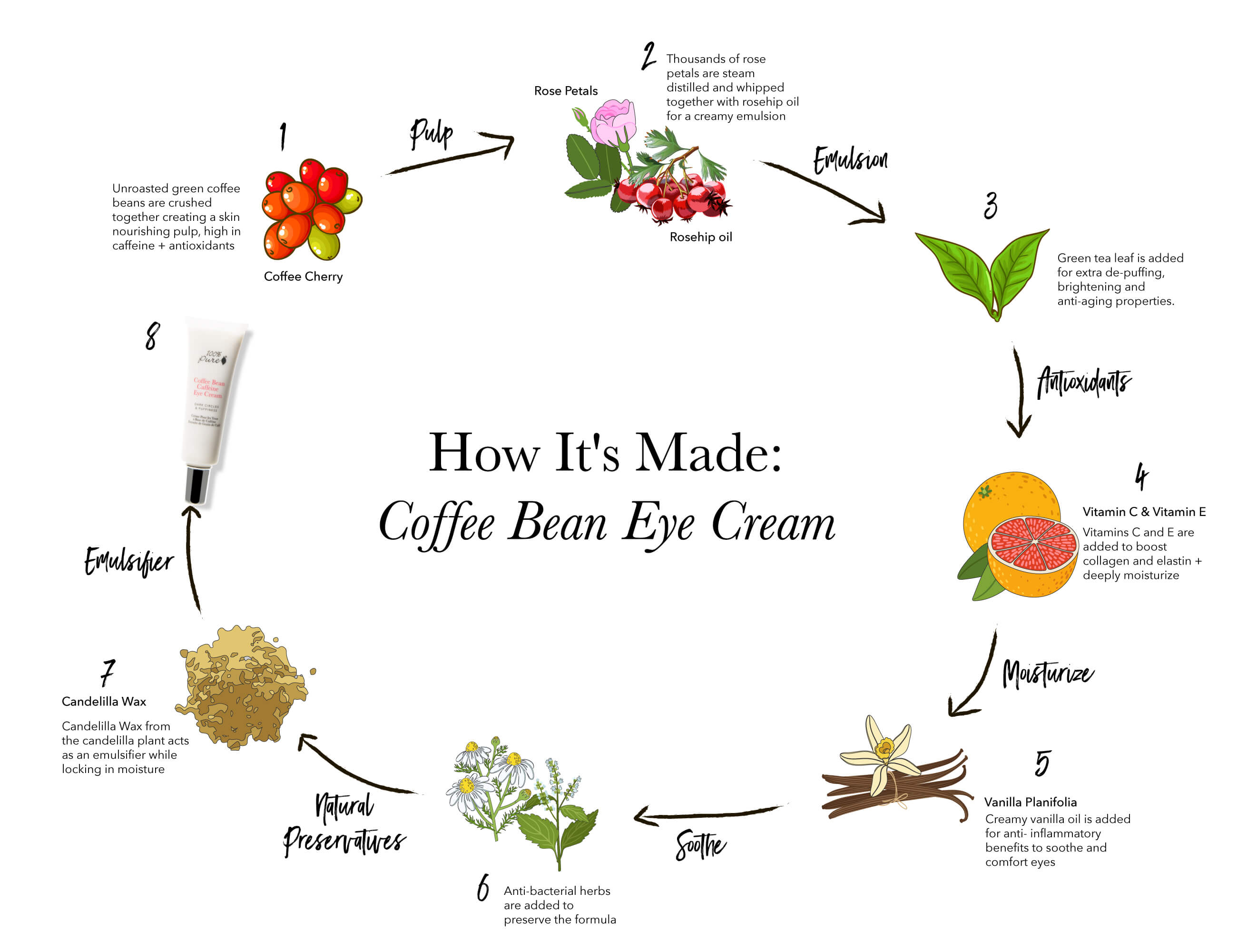 Coffee Bean Eye Cream