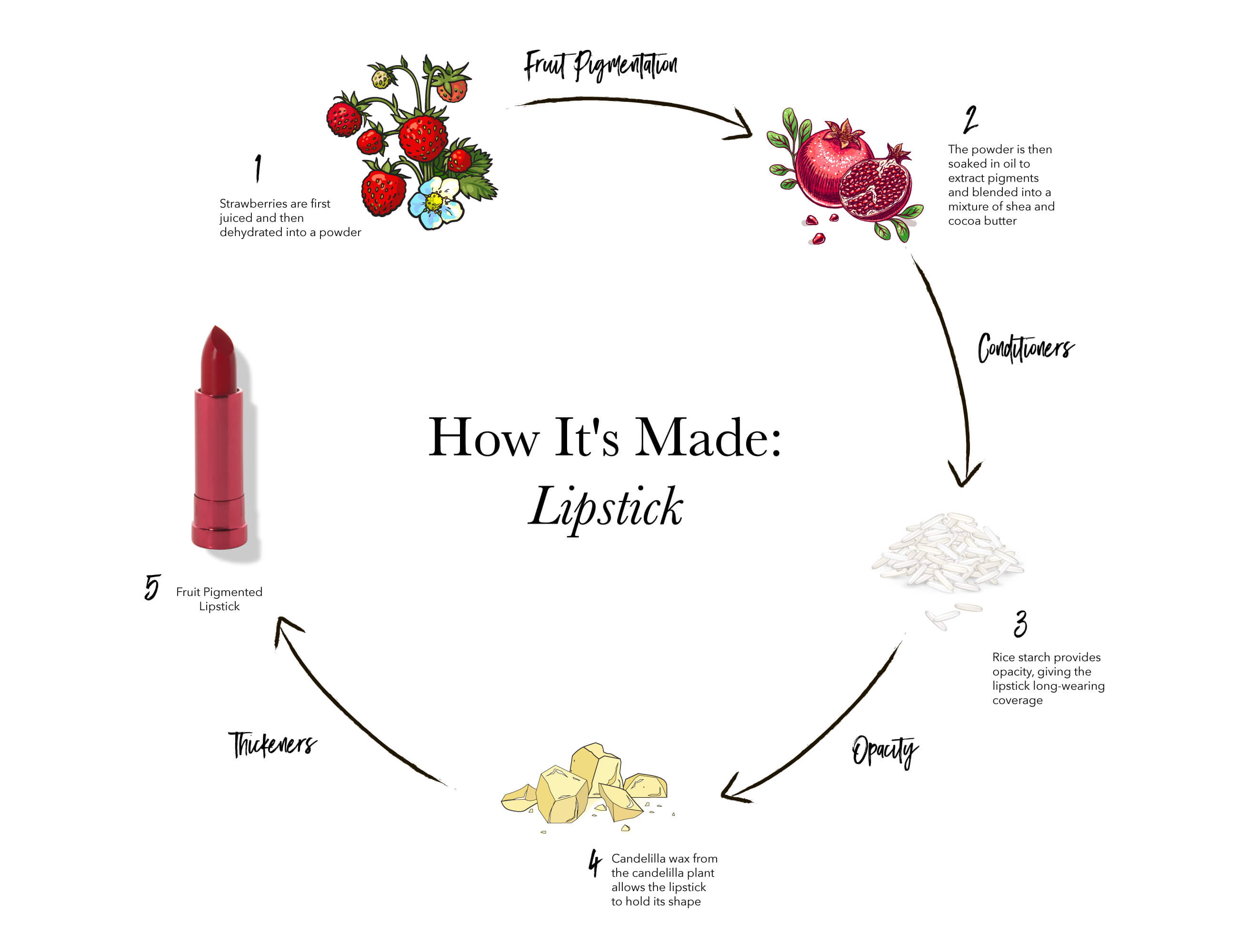 how ot make natural lipstick diagram