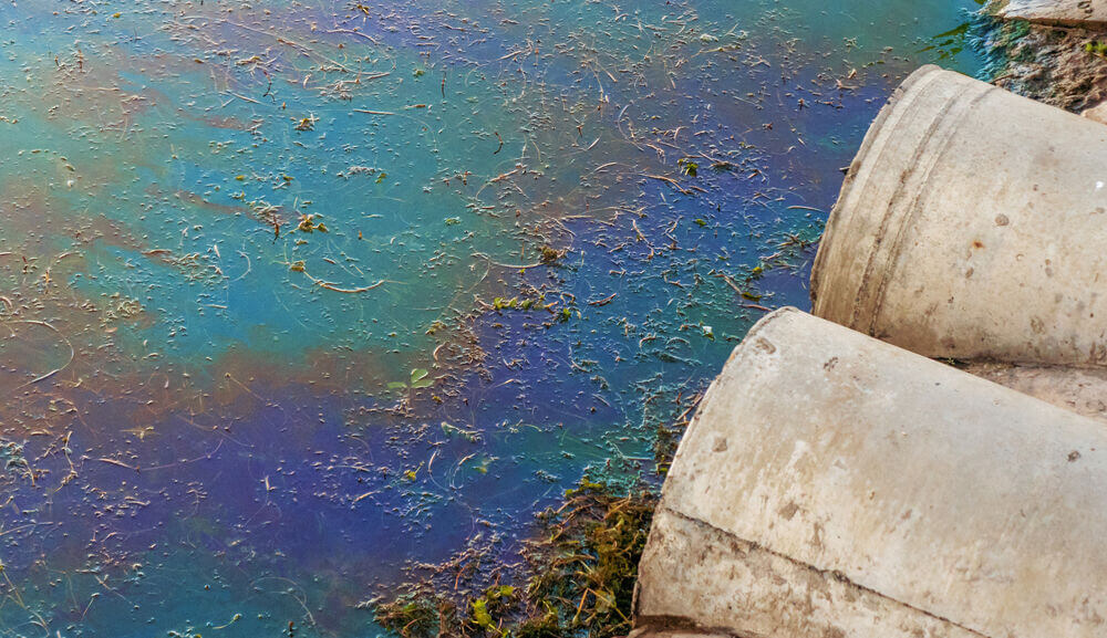 Polluted water.jpg