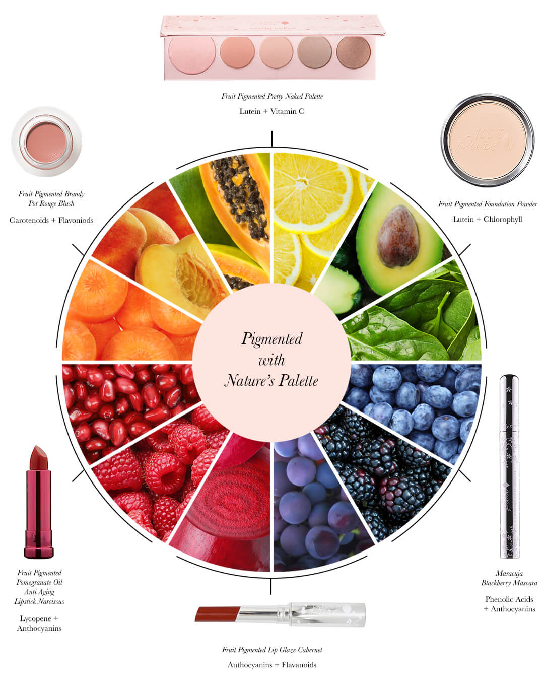 Pigmented Color Pie Chart