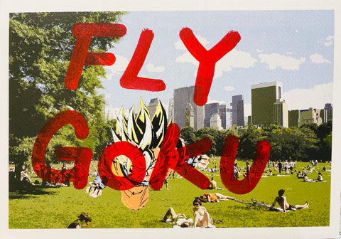"Go ku Park ""FLY GO KU"" (8"" x 12"") (Edition of 1)"