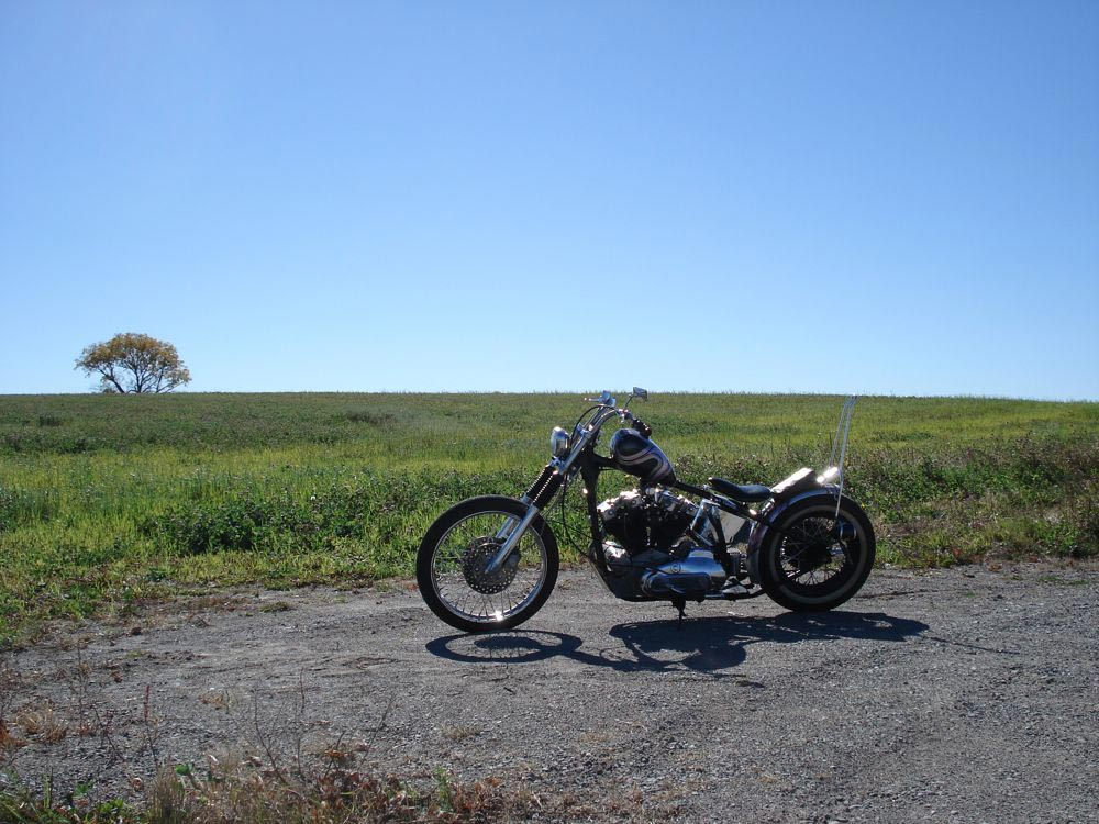 out_riding_4