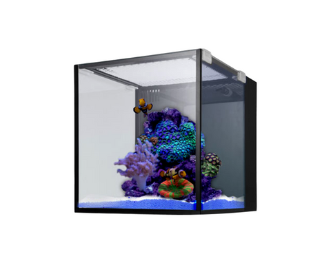 Innovative Marine Fusion Nano 10 (Black) 30 L