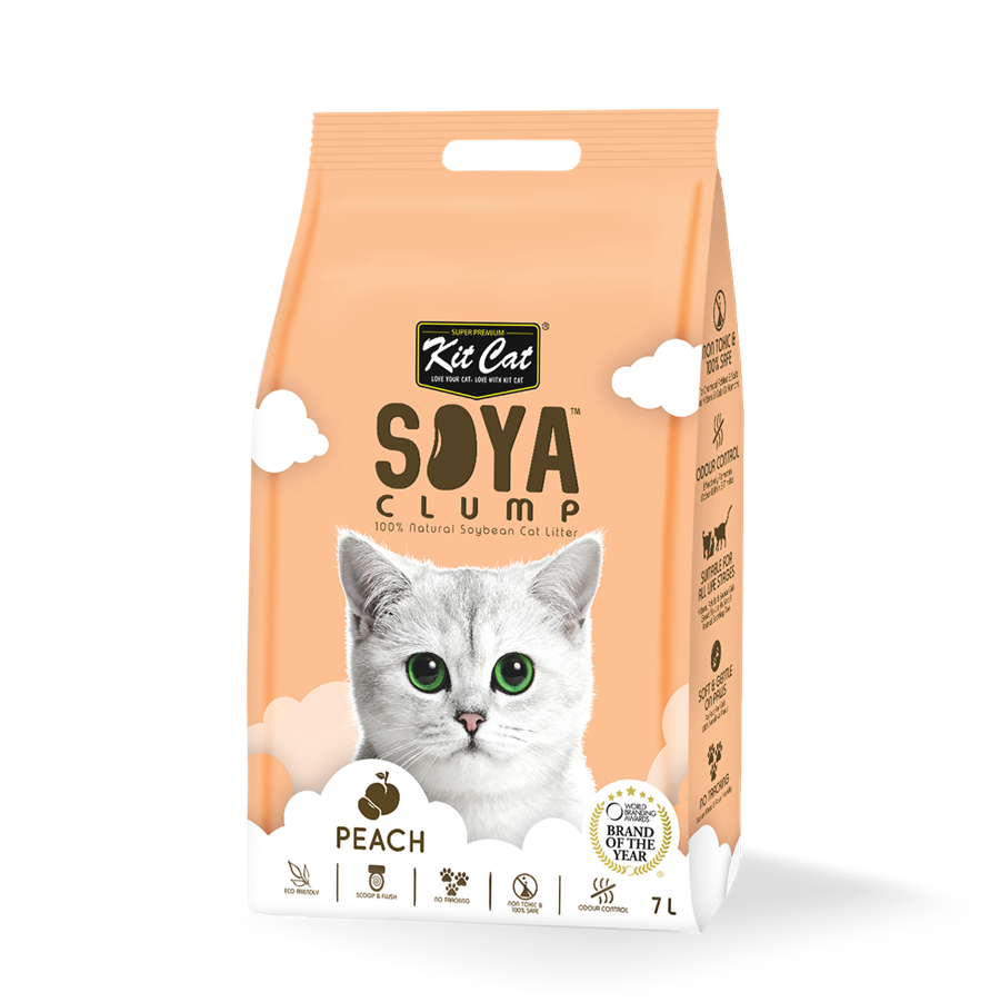 Kit Cat Soya Clump Peach