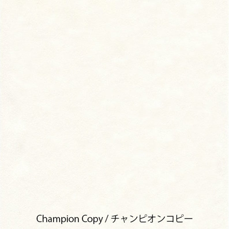 Yamamoto Paper Champion Copy A4 Loose Leaf 50 Sheets