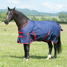 Load image into Gallery viewer, Gallop Trojan Classic 200 Turnout Rug
