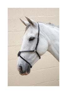 Hy Mexican Grackle Noseband
