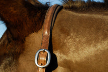 Load image into Gallery viewer, Rocco Italia Verona Leather Headcollar