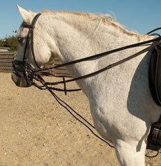 Rhinegold Draw Reins with Rope