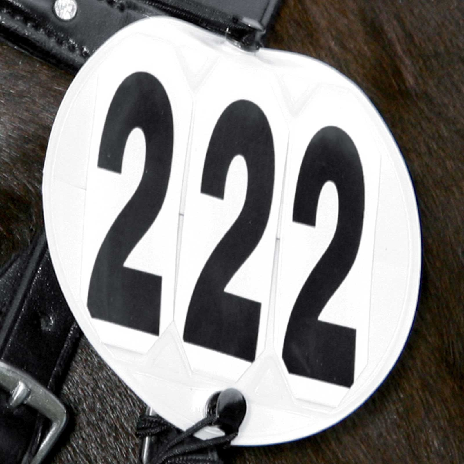 Wembley Elastic Bridle Number