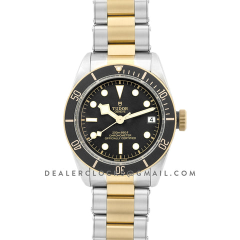 Tudor Heritage Black Bay Steel And Gold S&G M79733N