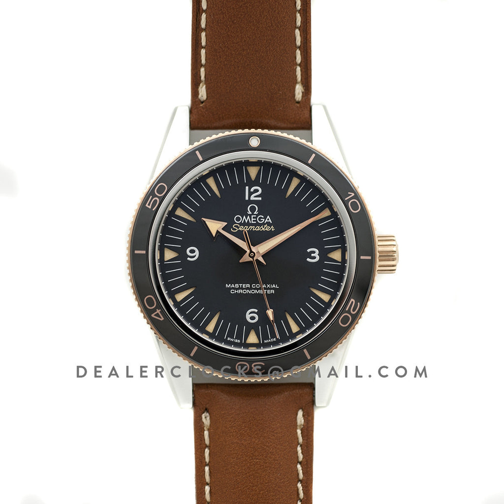 Seamaster 300 Sedna Gold in Steel