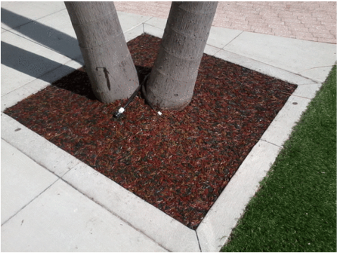 Rubber Mulch Tree Square