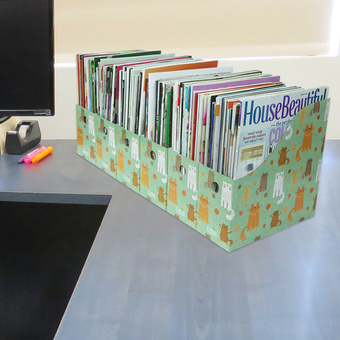Evelots Magazine File Holder-Organizer-Full 4 Inch Wide-Cat Style-W/Labels