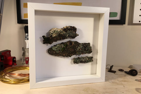 Framed Sculpture, Fungus (SOLD)