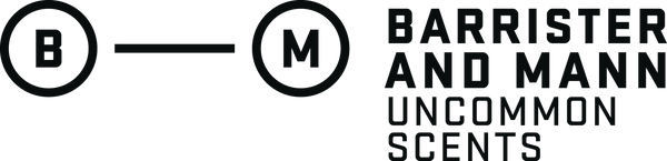 Barrister and Mann LLC