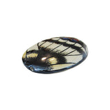 3C Studio Oval Black & White Butterfly Bead