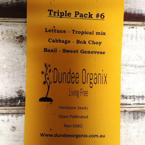 Starwin Social Enterprise, Dundee Organix Seeds - Triple Pack #6