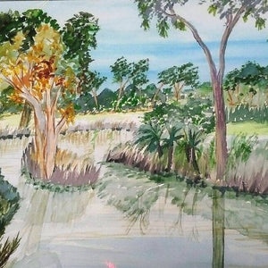 Starwin Social Enterprise, Watsons Watercolours - Billabong
