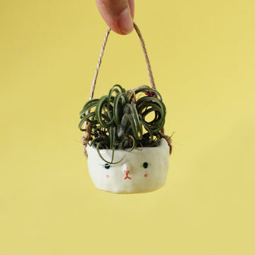 Mini Kitty Hanging Planter