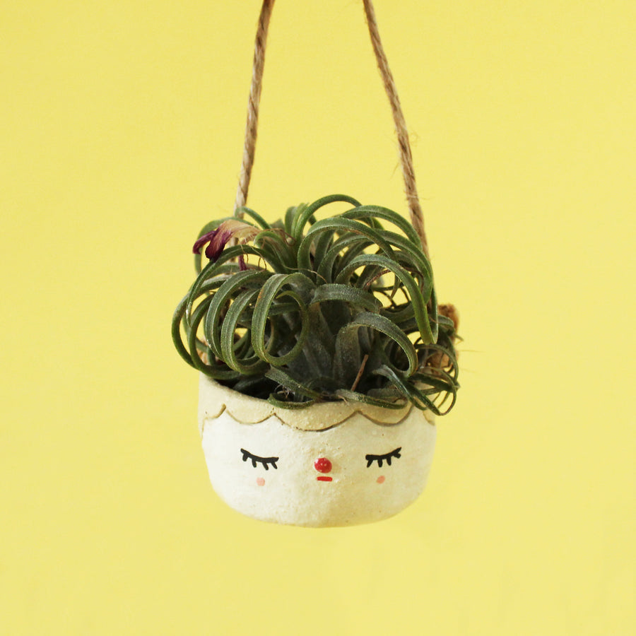 Mini Pierrot Hanging Planter