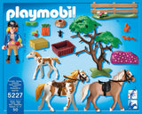 PLAYMOBIL 5227 Paddock with Horses and Foal