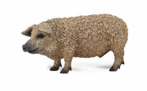 COLLECTA Mangalica Hungarian Pig