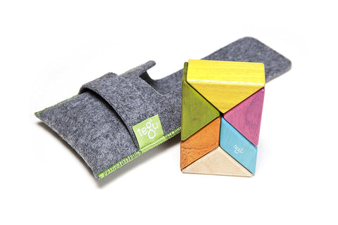 TEGU Pocket Pouch Prism 6pc TINTS