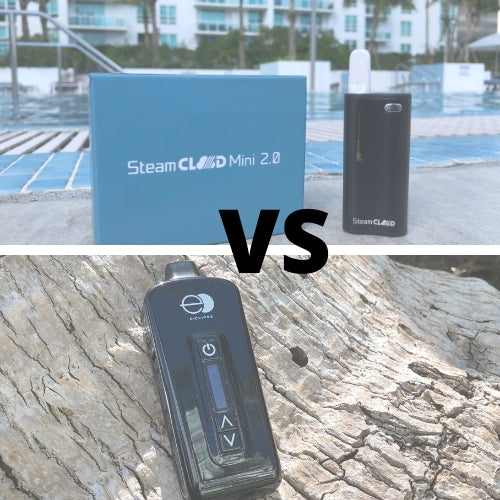 Dry Herb Vaporizer vs Oil Vape Pen