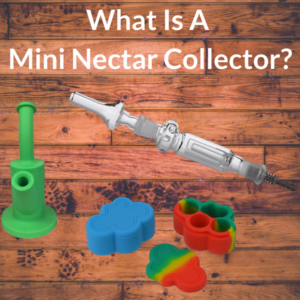 What Is A Mini Nectar Collector