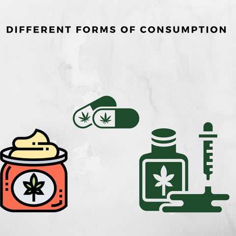CBD forms of consumption animations of lotions, pills and needles