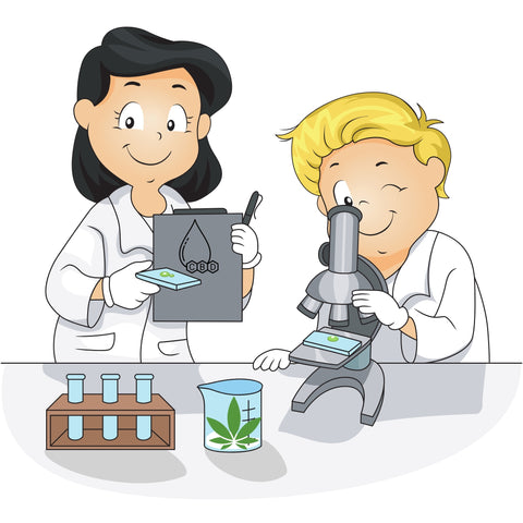 two lab workers looking at the breakdown of CBD