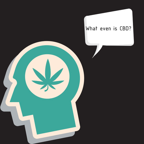 A brain thinking about what exactly is CBD