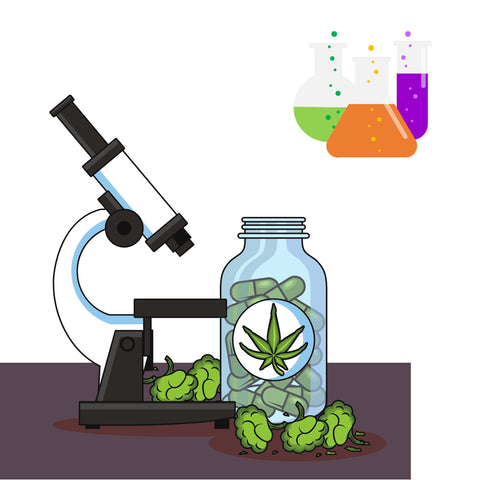 microscope looking at THC to find the chemical breakdown