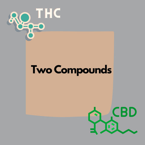 The and CBD strain animation and of the two compounds