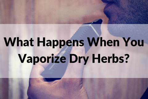 What Happens When You Vaporize Dry Herbs