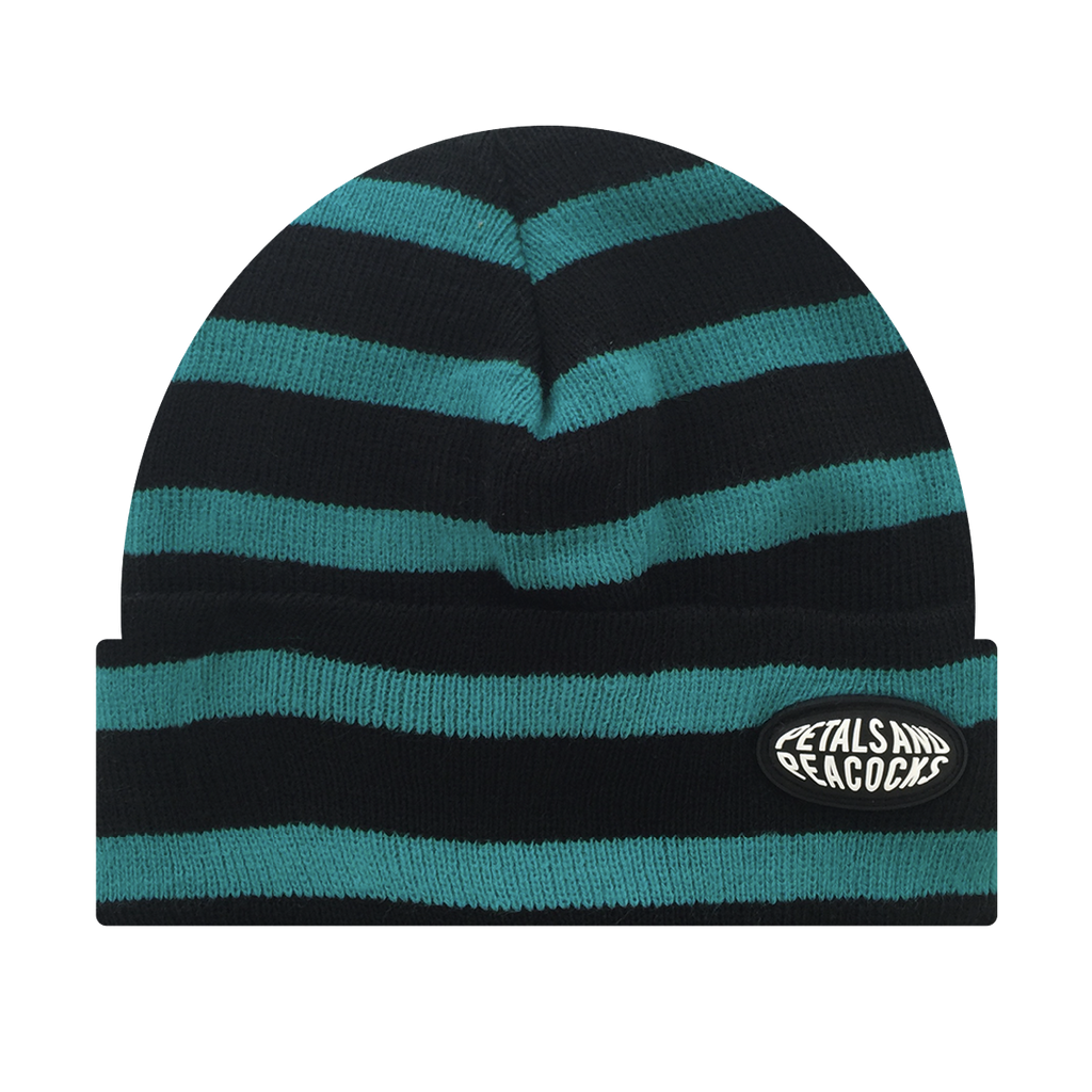 Striped Beanie in Blue