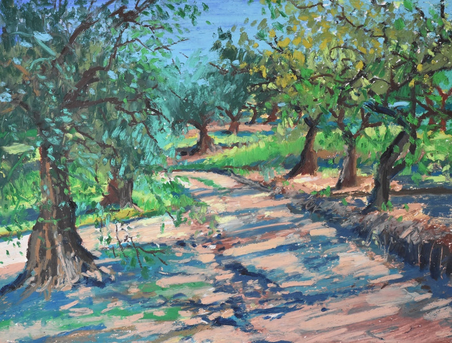 Road Through The Olive Grove