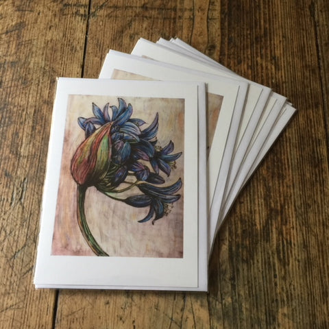 Agapanthus Blue Giant (card)