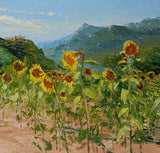 Field of Sunflowers, Saint Vincent